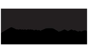 Worldflex Logo